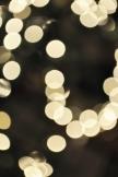 Lights #1 - Christmas 2014