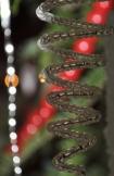 Ornament #6 - Christmas 2014
