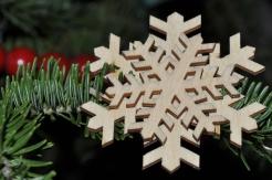 Ornament #7 - Christmas 2014